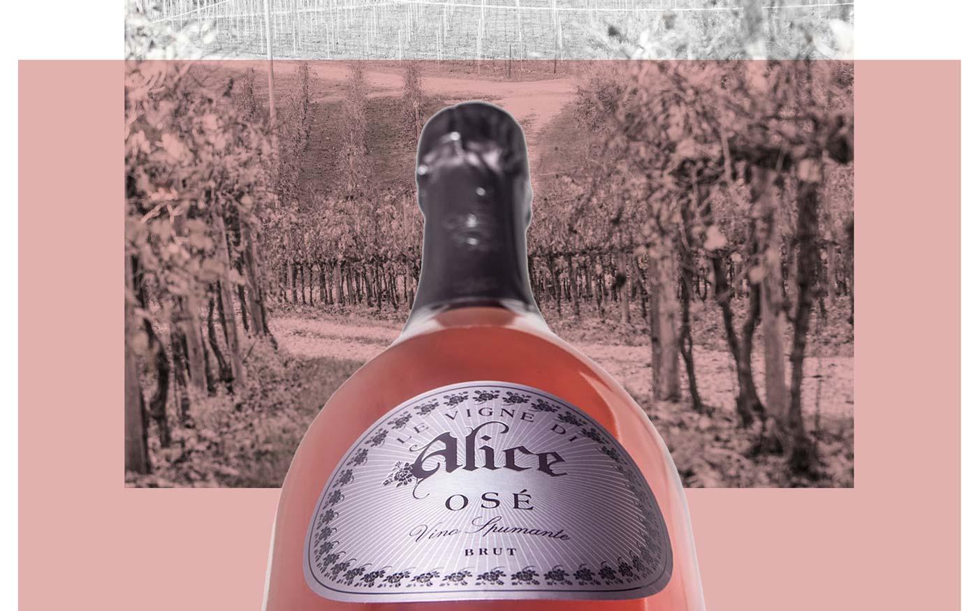 bottiglia spumante rosè osè su sfondo della vigna