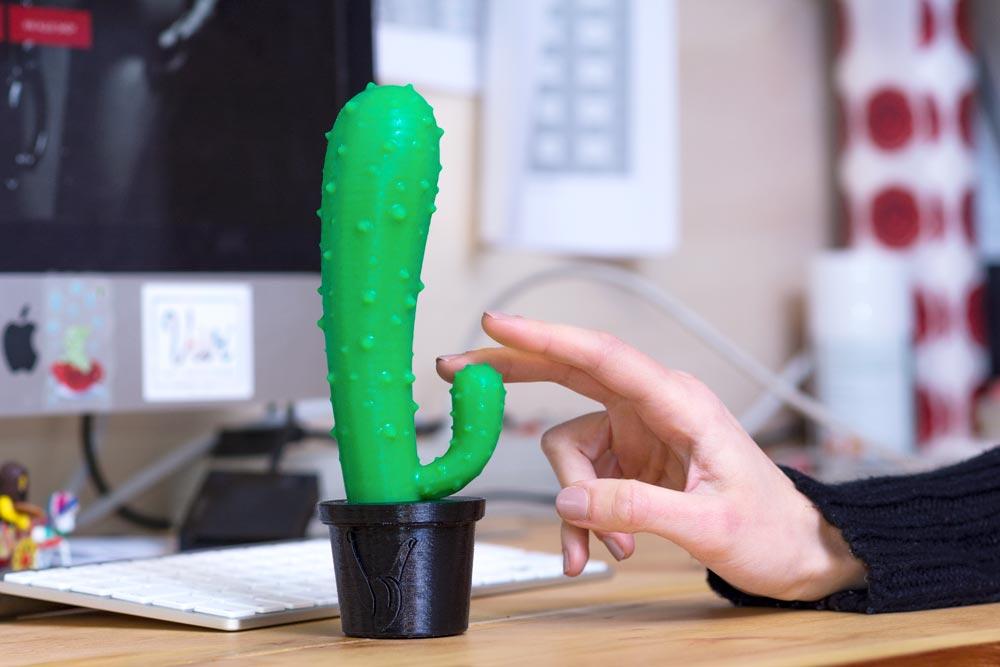 dildo in silicone a forma di cactus